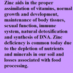 Zinc ionic mineral dietary supplement Clip By C R Supplements, LLC, Zinc, WaterOz Replacement, Liquid dietary supplement, Kosher of America approved, KOA approved, Pareve, vegan application, elemental mineral, flexible liquid mineral, maximum absorption